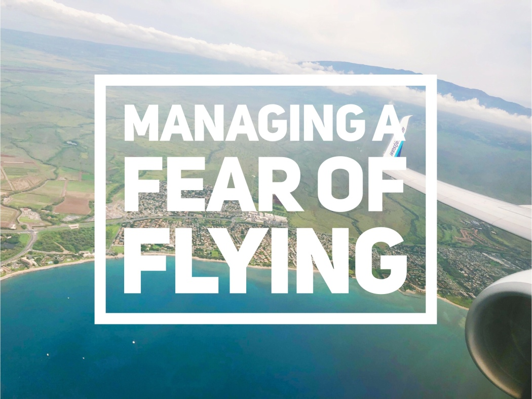 Anxiety, Fear, Panic Attack, Fear of Flying, Airplane, Claustrophobia